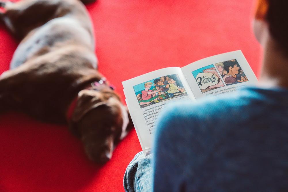 Lesen ist Wau: Kind liest einem Hund vor