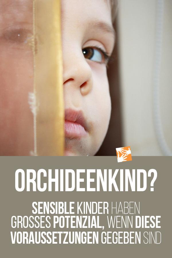 Orchideenkind: Sensible Kinder haben großes Potenzial