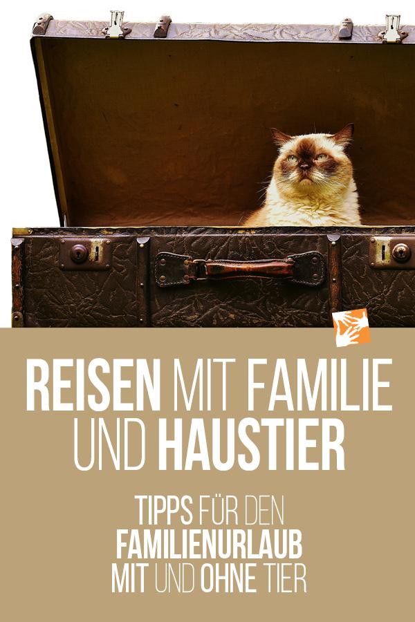 Familienurlaub mit Haustier: Tipps für die Reise mit und ohne Tier