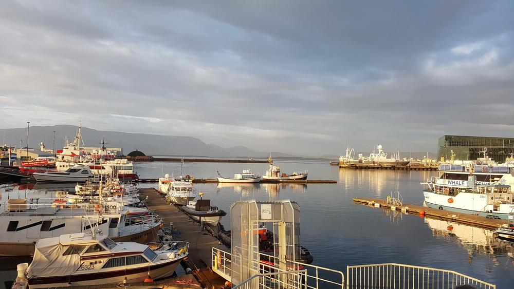 Island mit Kind: Reykjavik mit Familie - alter Hafen