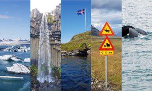 Island mit Kind: Familien-Roadtrip entlang Islands Ringstraße