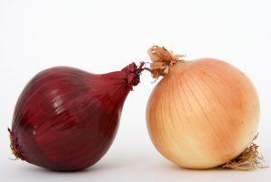 Die Zwiebel: Das Wundermittel in der Erkältungszeit BUCH GEWINNEN