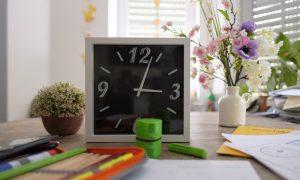 Freilerner-Erfahrungsbericht: So klappt Homeschooling im häuslichen Unterricht