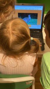 Lernen mit der Digitalen Schatzkiste