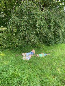 Unter dem Baum liegen und genau beobachten