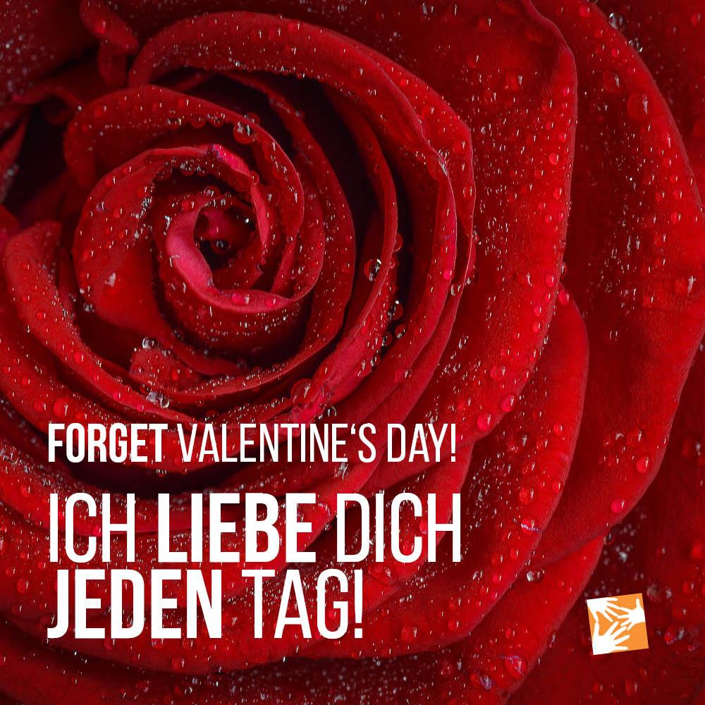 Liebe Zitate, Sprüche zum Valentinstag: Forget Valentines's Day - Ich liebe dich jeden Tag